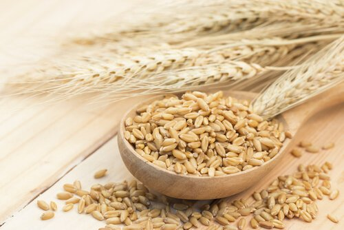 , Cómo elaborar un remedio con cebada contra el colesterol alto, Alimenta y Cura