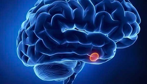 , ¿Qué es y para qué sirve la melatonina?, Alimenta y Cura