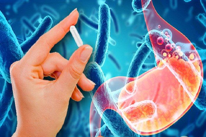 , Los mejores probióticos para aliviar tus padecimientos, Alimenta y Cura, Alimenta y Cura