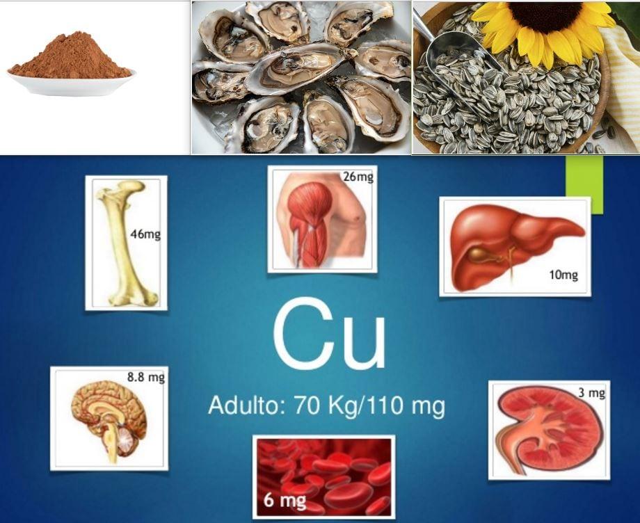 , Alimentos con cobre: Importancia, fuentes y como consumirlo, Alimenta y Cura