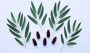 , Remedio natural para la gripe de eucalipto, Alimenta y Cura