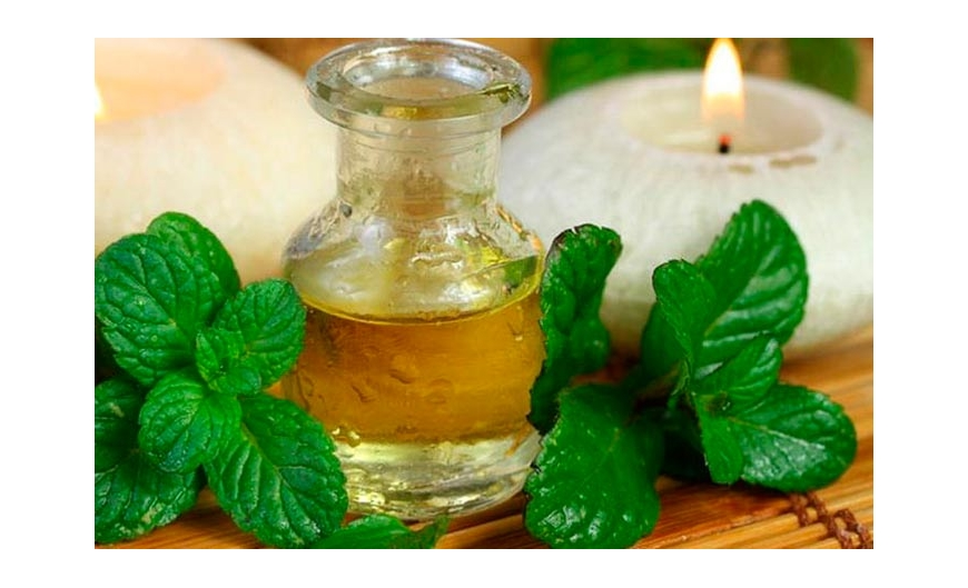 , ¡Utilice aceite de menta para tratar el herpes! ¡Sepa más!, Alimenta y Cura