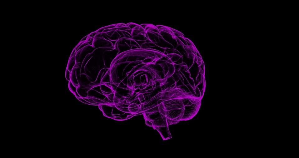 , Cada vez más pruebas de que el Alzheimer podría ser también, y en algunos casos, una enfermedad transmisible, Alimenta y Cura