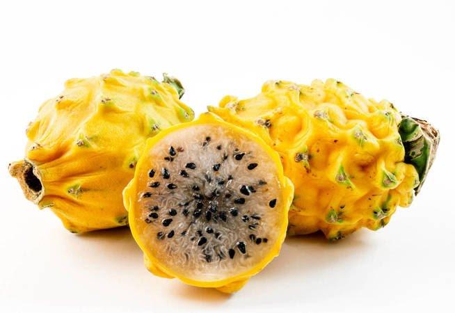 , Todo lo que hay que saber sobre la pitahaya, Alimenta y Cura, Alimenta y Cura