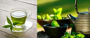 , Te verde, Antioxidante Natural !, Alimenta y Cura