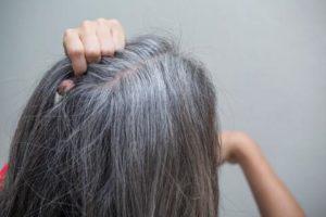 , Si quieres que desaparezca cada cabello blanco (Las Canas) en tu cabeza solo aplica esto y se feliz, Alimenta y Cura