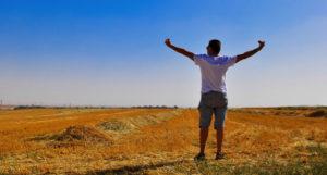 , Azafrán, ¿clave para la felicidad?, Alimenta y Cura